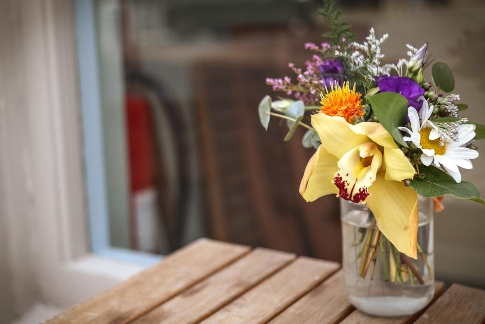 Bristol flowers