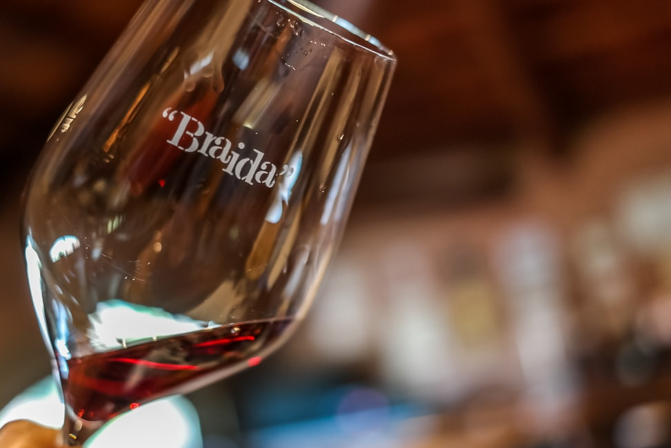 Visiting wineries to drink Barolo wine
