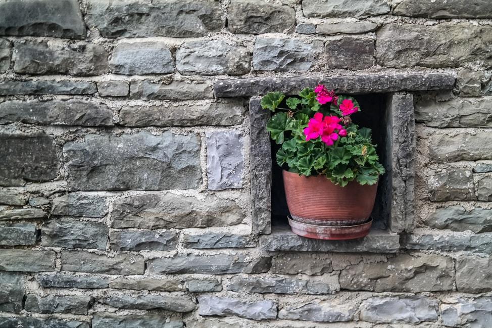 papigo greece window box