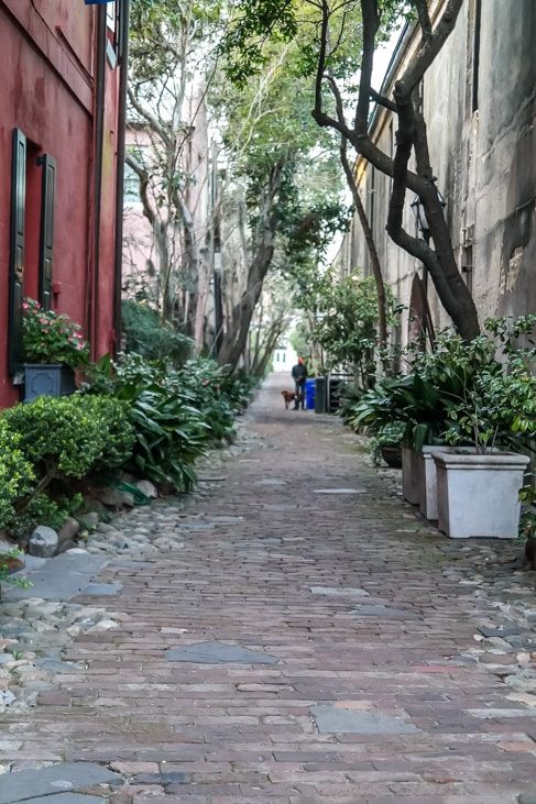 best things to do in charleston many of the streets of charleston are mews streets