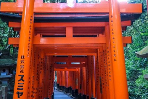 Kyoto: Geishas, Soba & Bamboo thumbnail